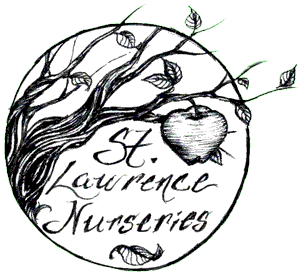 Saint Lawrence Nurseries logo