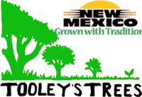 Tooleys Trees logo