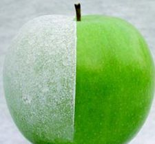 Surround Apple: Western growers use Surround primarily to prevent sunburn.