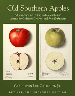 Old Southern Apples by Creighton Lee Calhoun